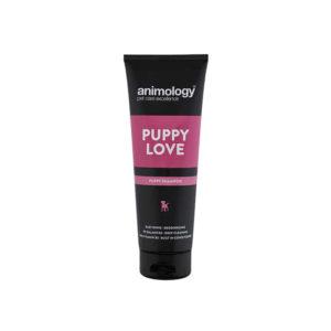 Higiene para cachorros de perros